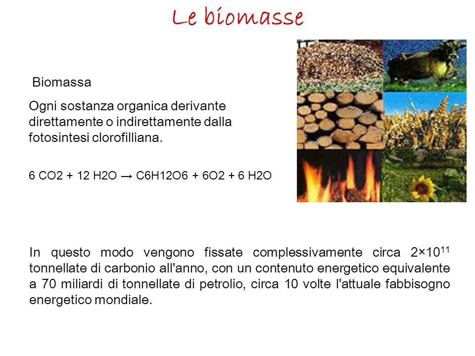Le biomasse Biomassa. Ogni sostanza organica derivante direttamente o indirettamente dalla fotosintesi clorofilliana.