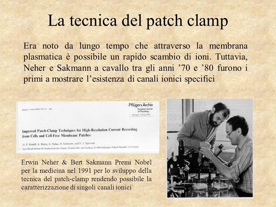 La tecnica del patch clamp