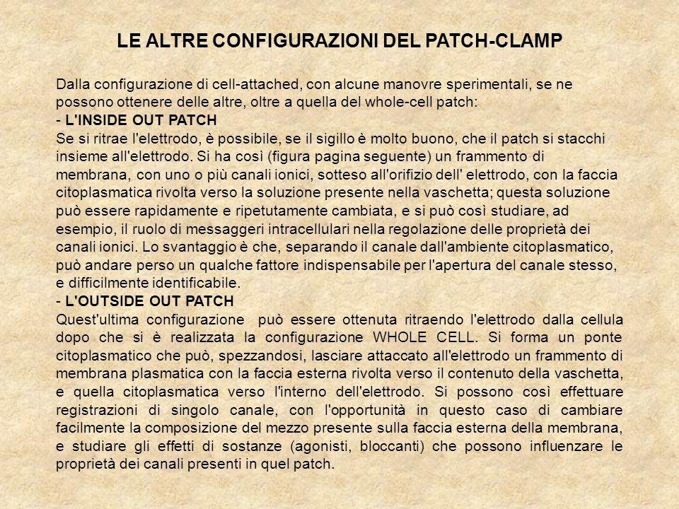 LE ALTRE CONFIGURAZIONI DEL PATCH-CLAMP