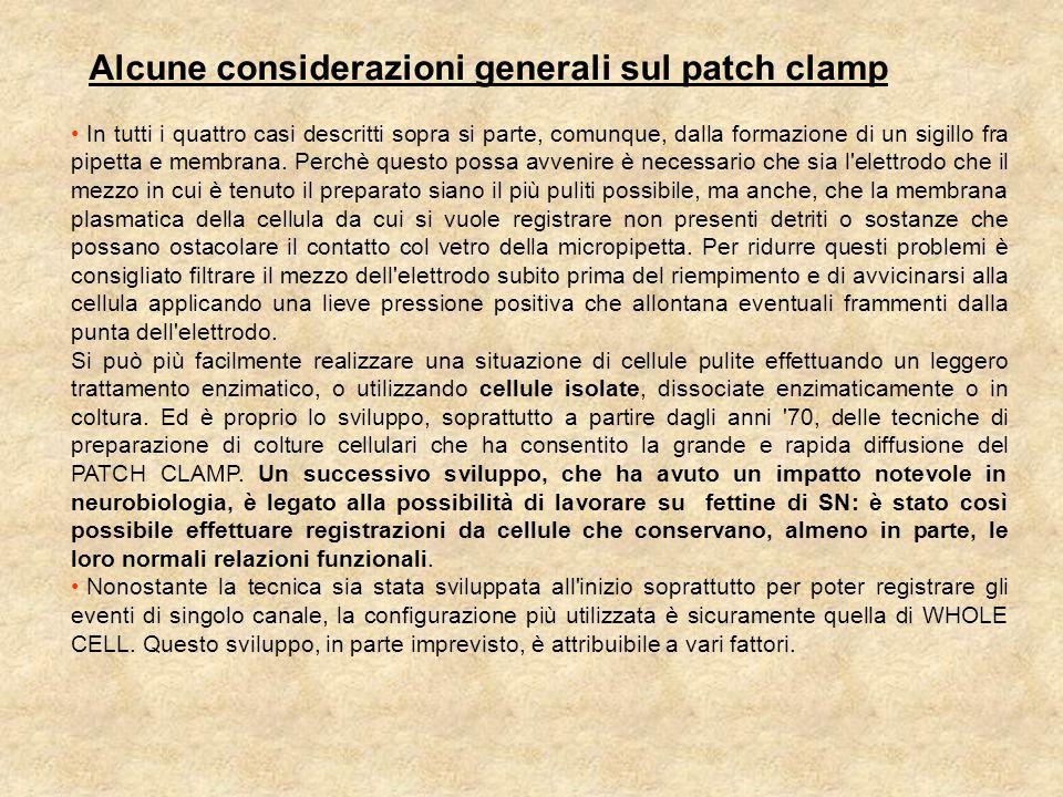 Alcune considerazioni generali sul patch clamp
