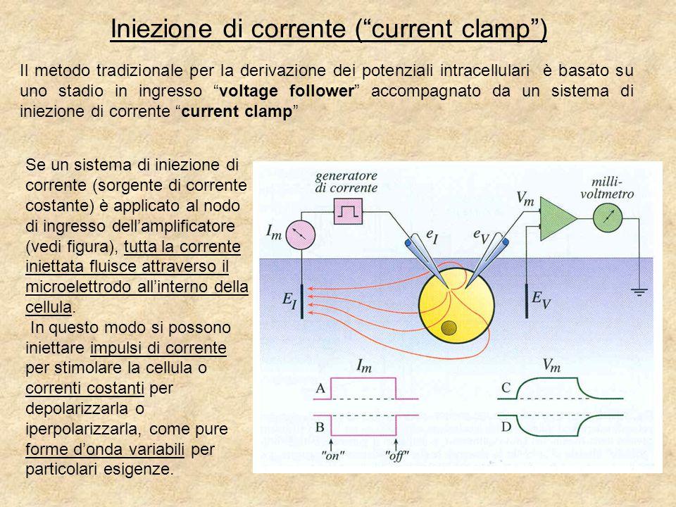 Iniezione di corrente ( current clamp )