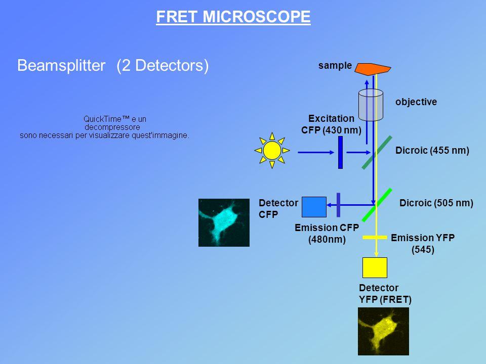 Beamsplitter (2 Detectors)