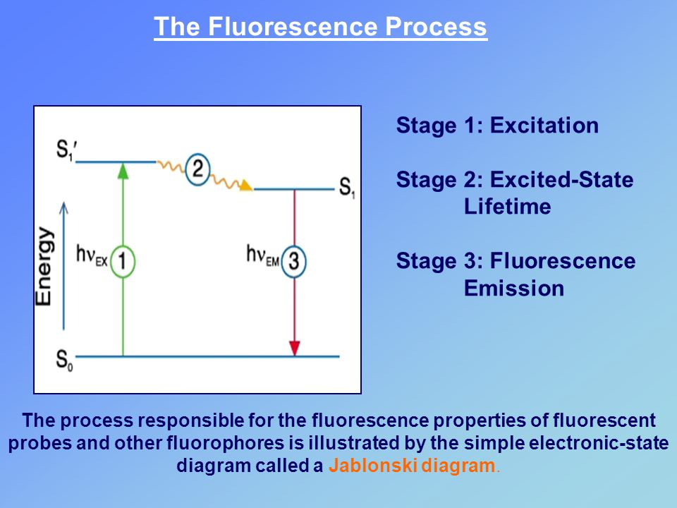 The process responsible for the fluorescence properties of fluorescent