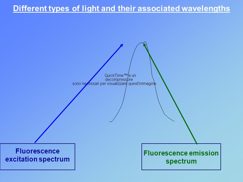 Fluorescence emission spectrum