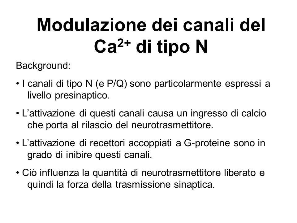 Modulazione dei canali del Ca2+ di tipo N