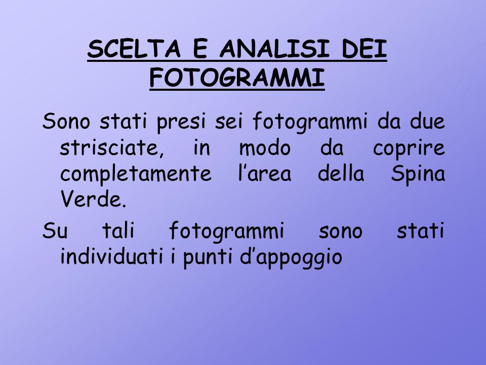SCELTA E ANALISI DEI FOTOGRAMMI