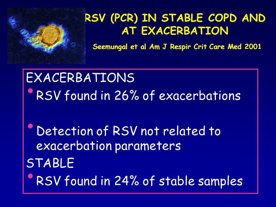 RSV found in 26% of exacerbations