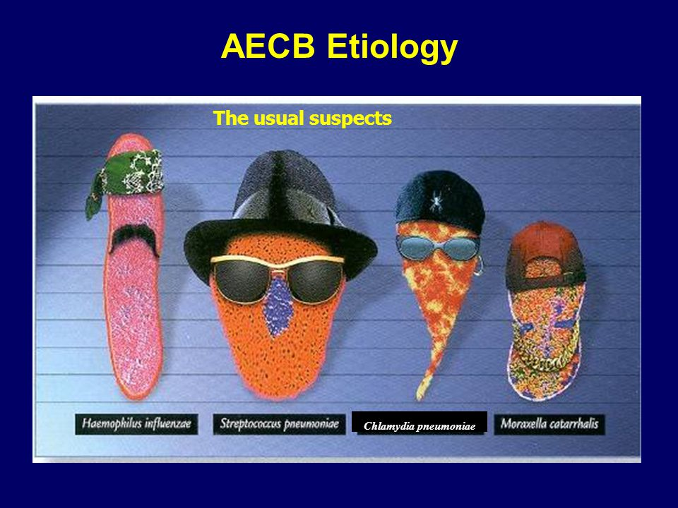 AECB Etiology The usual suspects Chlamydia pneumoniae
