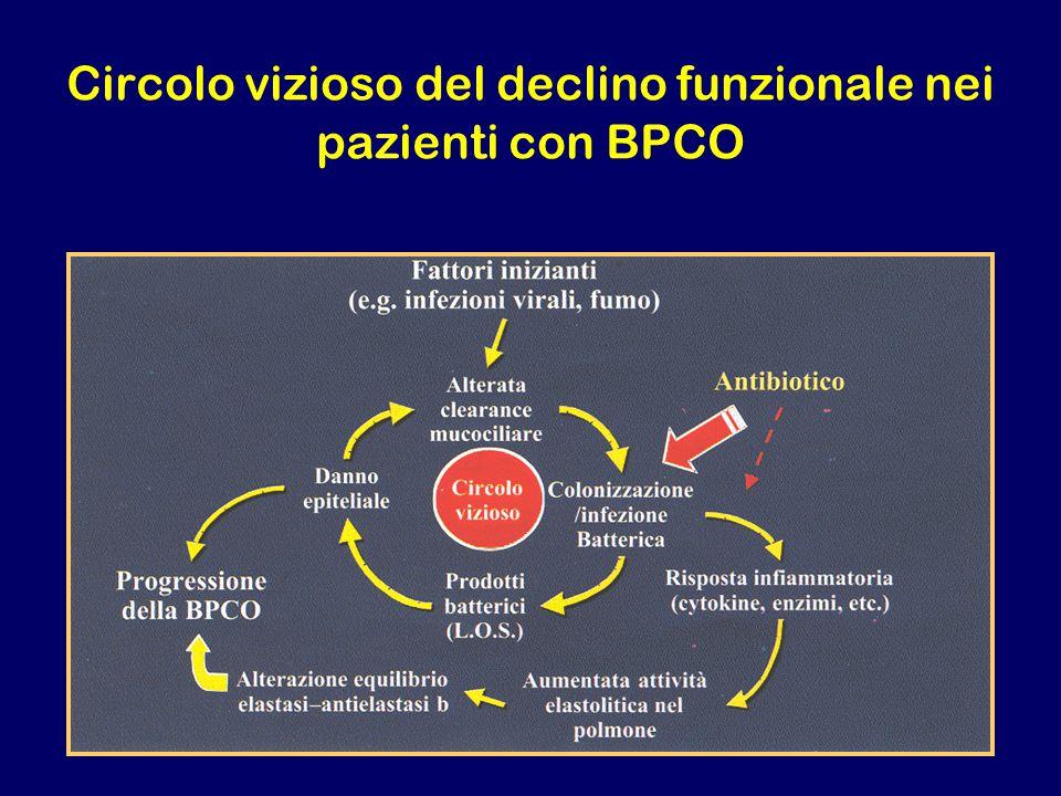 Circolo vizioso del declino funzionale nei pazienti con BPCO