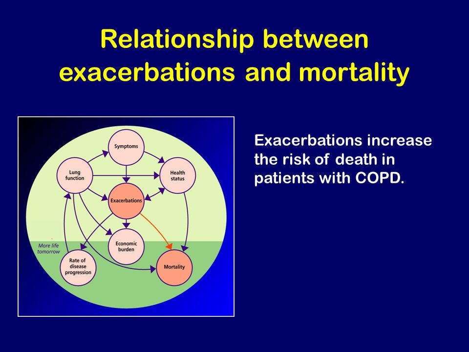 Relationship between exacerbations and mortality