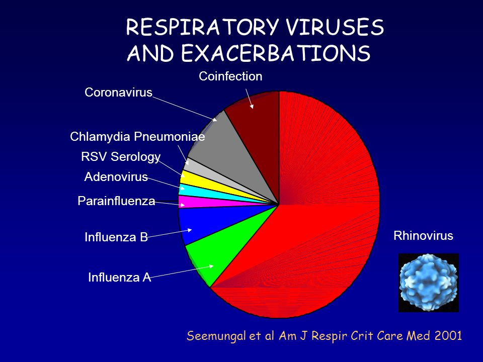 RESPIRATORY VIRUSES AND EXACERBATIONS