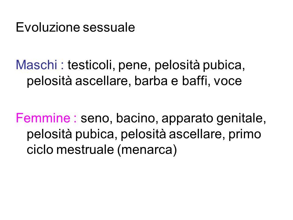 Evoluzione sessuale Maschi : testicoli, pene, pelosità pubica, pelosità ascellare, barba e baffi, voce.