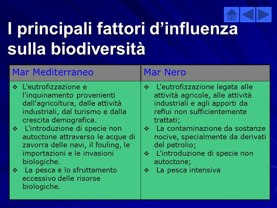 I principali fattori d'influenza sulla biodiversità