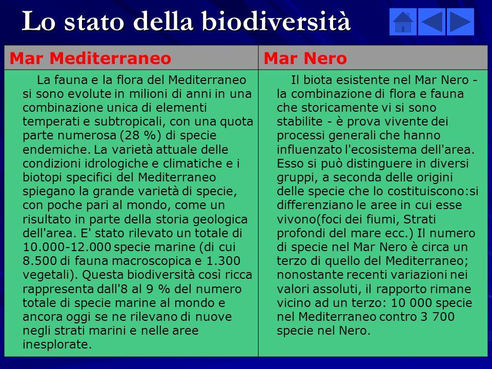 Lo stato della biodiversità