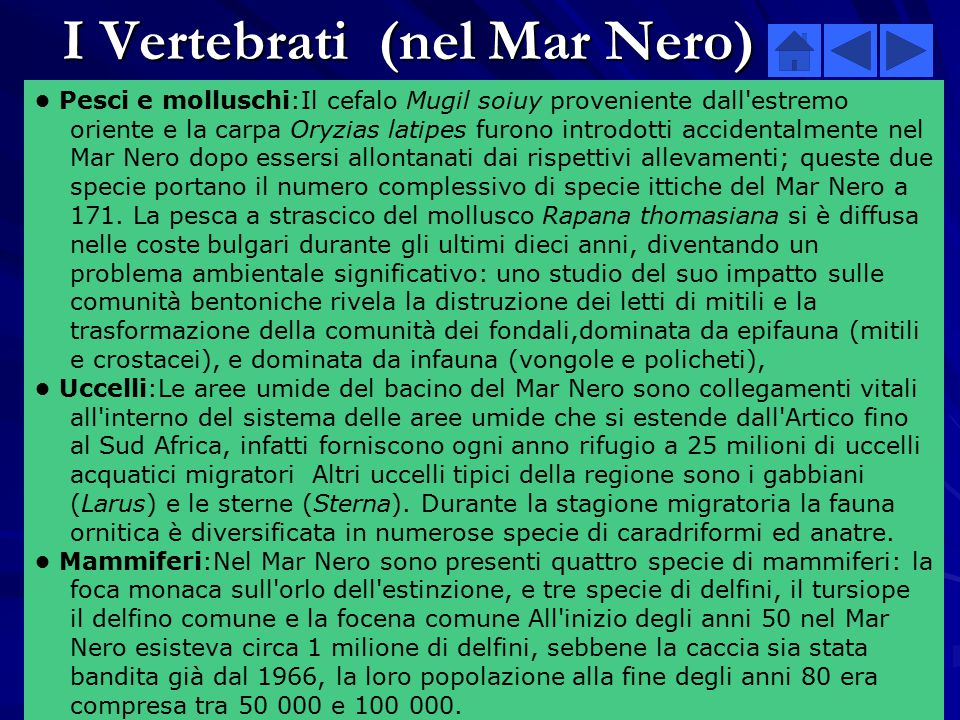 I Vertebrati (nel Mar Nero)