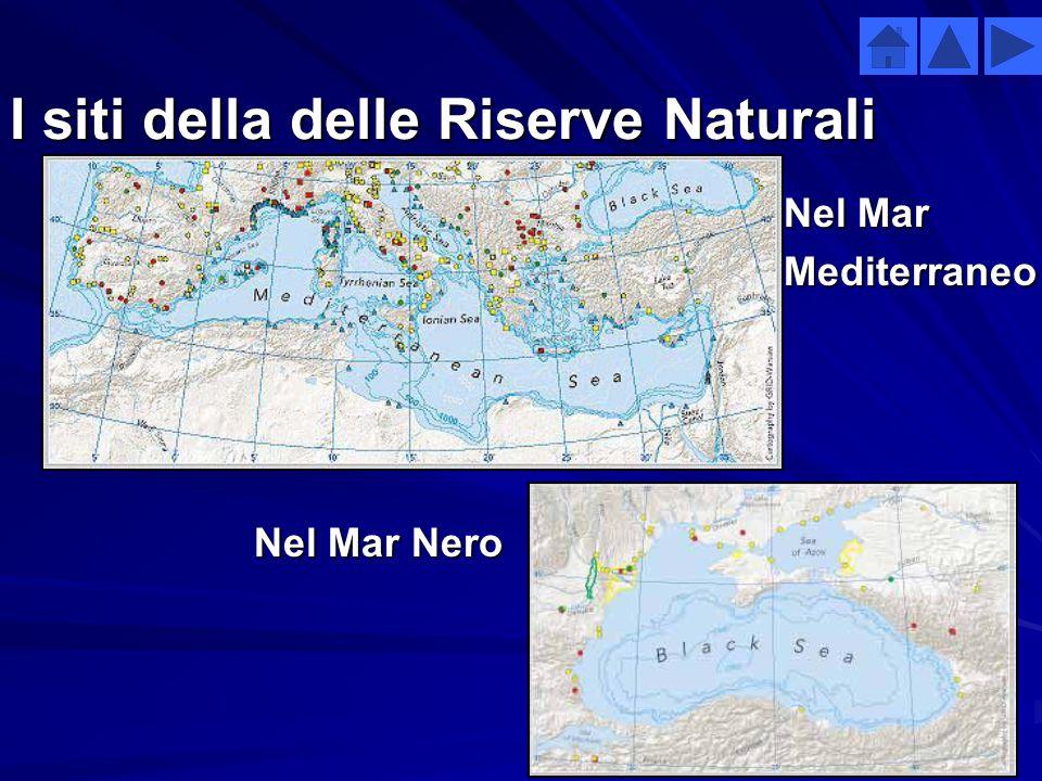 I siti della delle Riserve Naturali