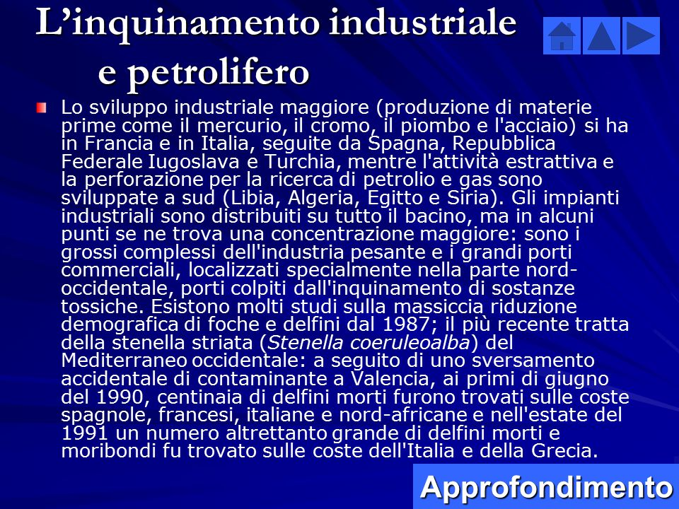 L'inquinamento industriale e petrolifero