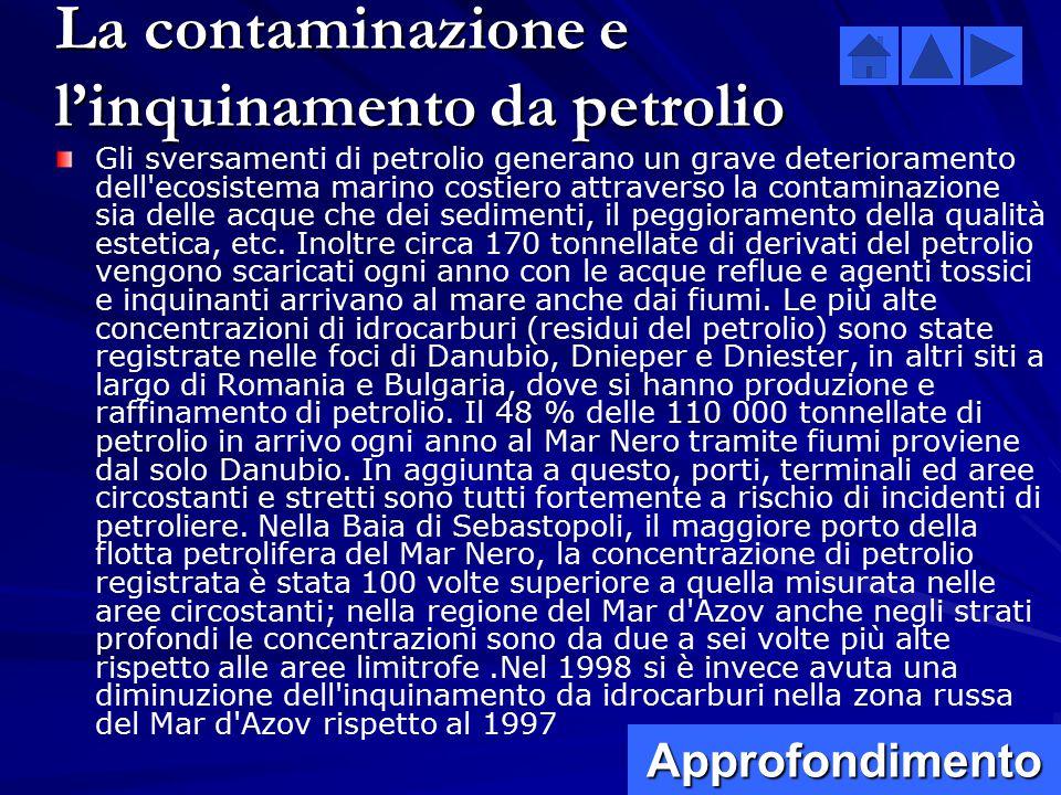 La contaminazione e l'inquinamento da petrolio