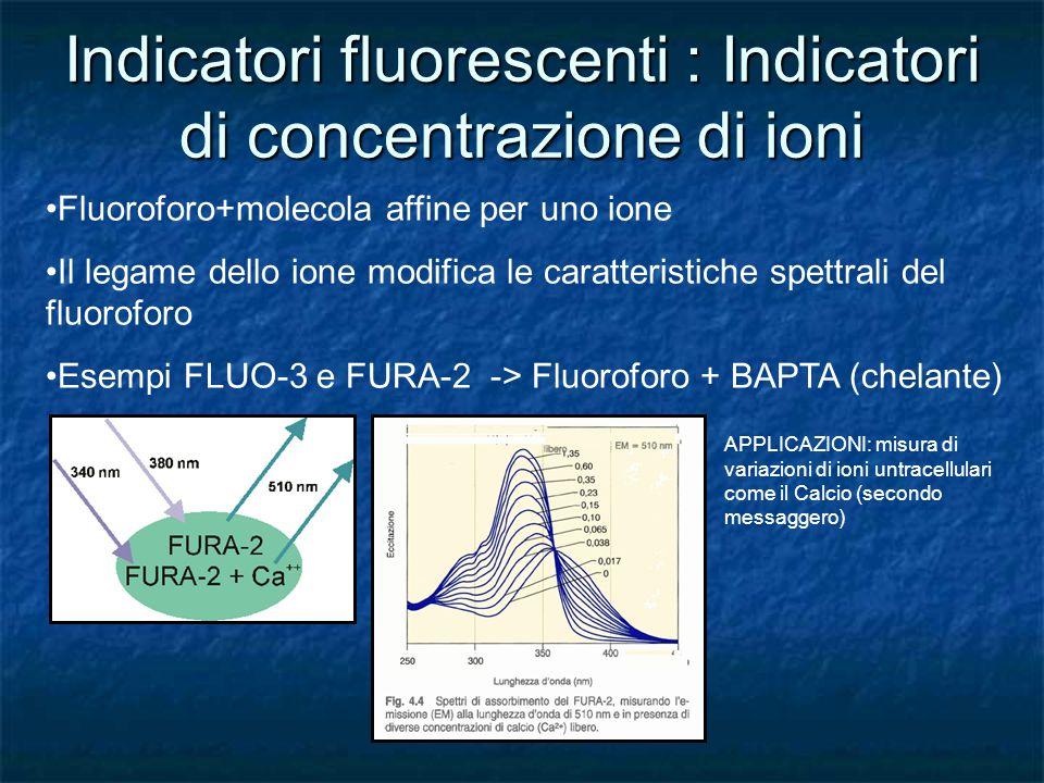 Indicatori fluorescenti : Indicatori di concentrazione di ioni