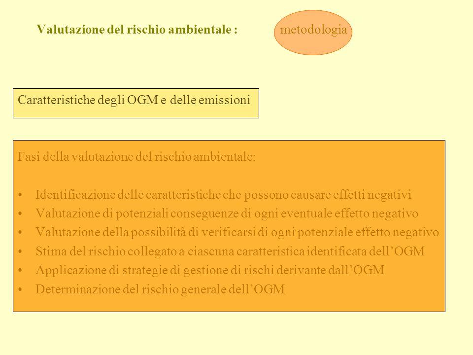 Valutazione del rischio ambientale : metodologia