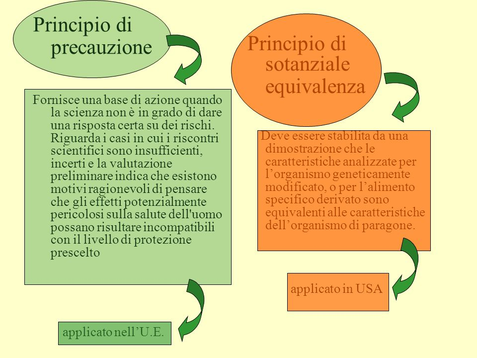 Principio di precauzione Principio di sotanziale equivalenza