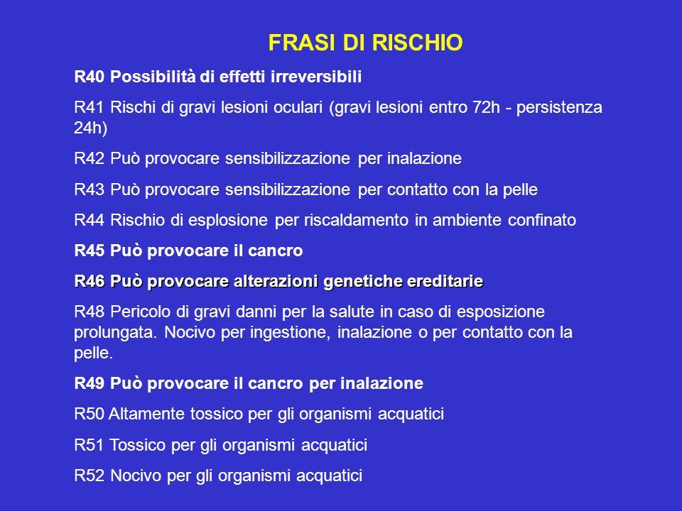 FRASI DI RISCHIO R40 Possibilità di effetti irreversibili. R41 Rischi di gravi lesioni oculari (gravi lesioni entro 72h - persistenza 24h)