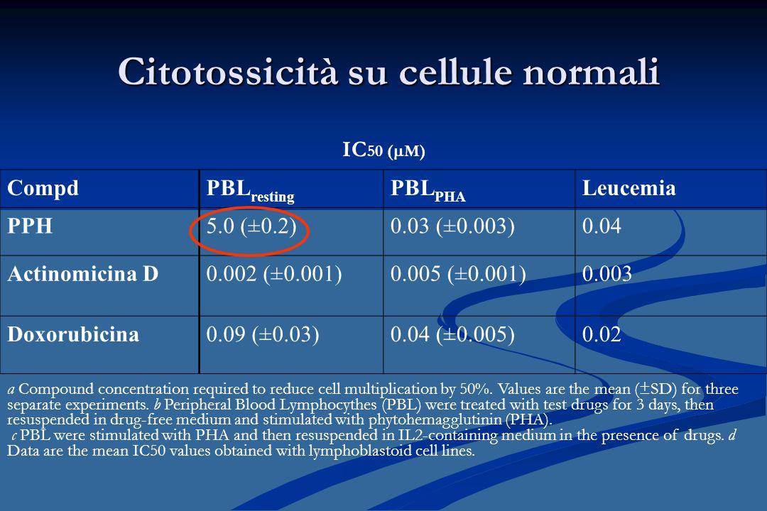 Citotossicità su cellule normali