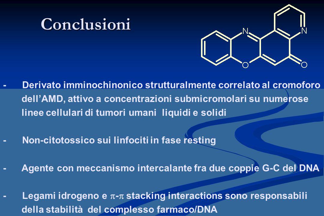 Conclusioni - Derivato imminochinonico strutturalmente correlato al cromoforo. dell'AMD, attivo a concentrazioni submicromolari su numerose.