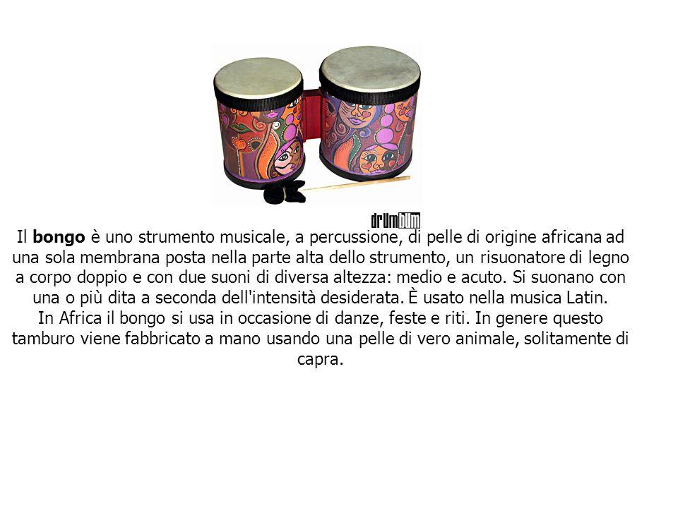 Il bongo è uno strumento musicale, a percussione, di pelle di origine africana ad una sola membrana posta nella parte alta dello strumento, un risuonatore di legno a corpo doppio e con due suoni di diversa altezza: medio e acuto. Si suonano con una o più dita a seconda dell intensità desiderata. È usato nella musica Latin.