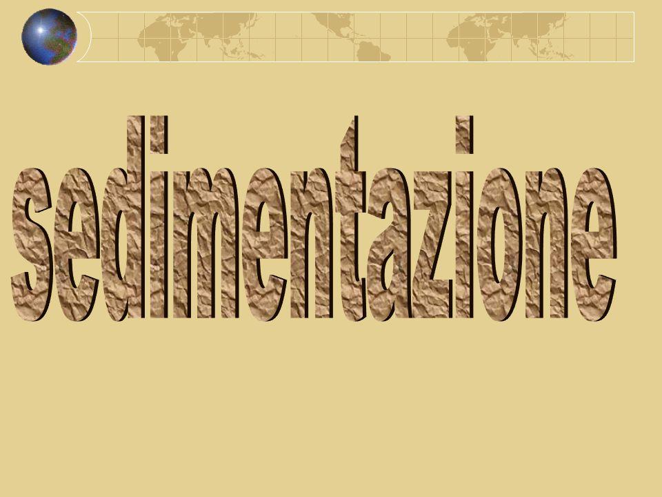 sedimentazione
