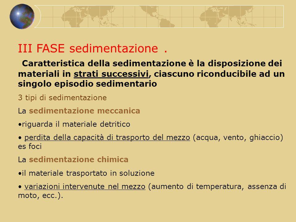 III FASE sedimentazione
