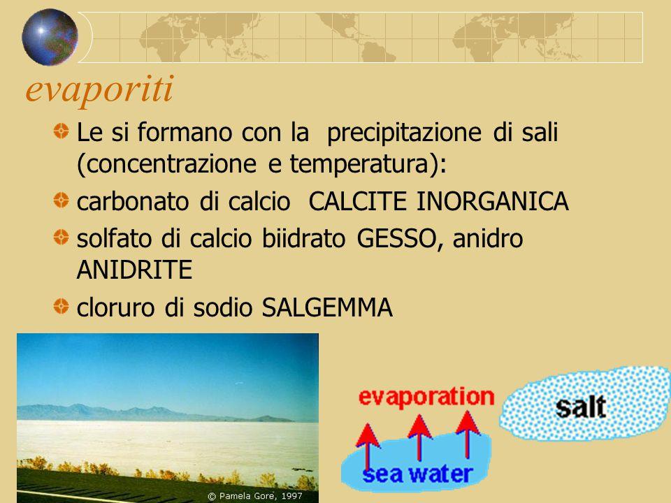 evaporiti Le si formano con la precipitazione di sali (concentrazione e temperatura): carbonato di calcio CALCITE INORGANICA.