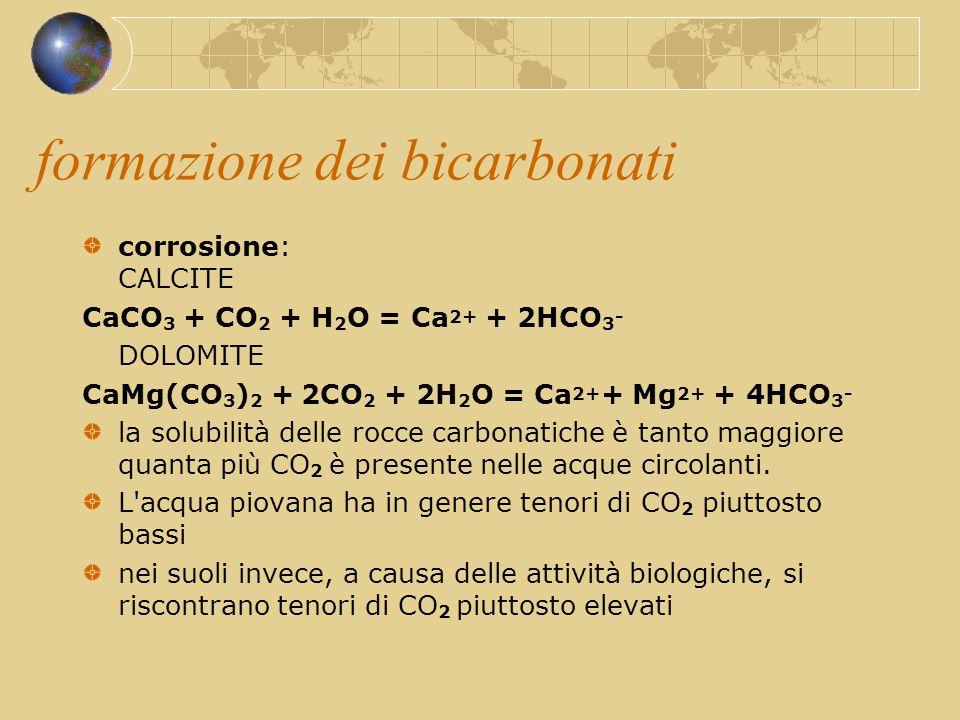 formazione dei bicarbonati
