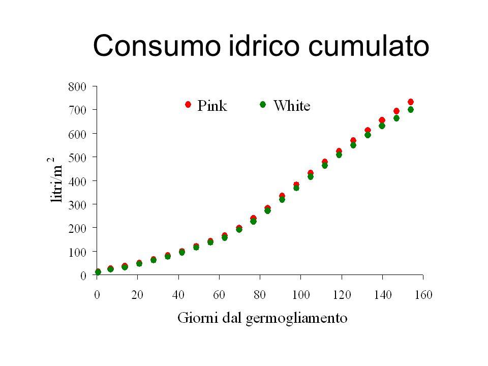Consumo idrico cumulato
