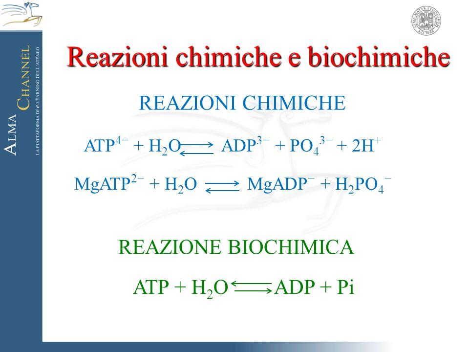 Reazioni chimiche e biochimiche