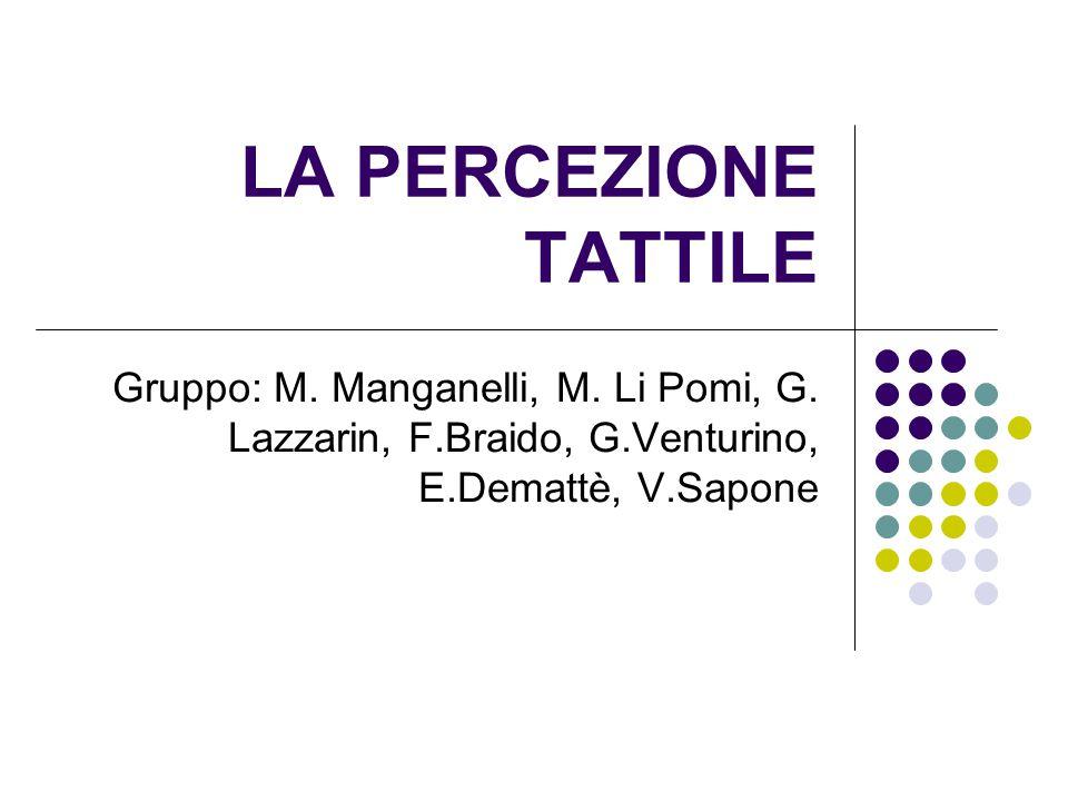 LA PERCEZIONE TATTILE Gruppo: M. Manganelli, M. Li Pomi, G.