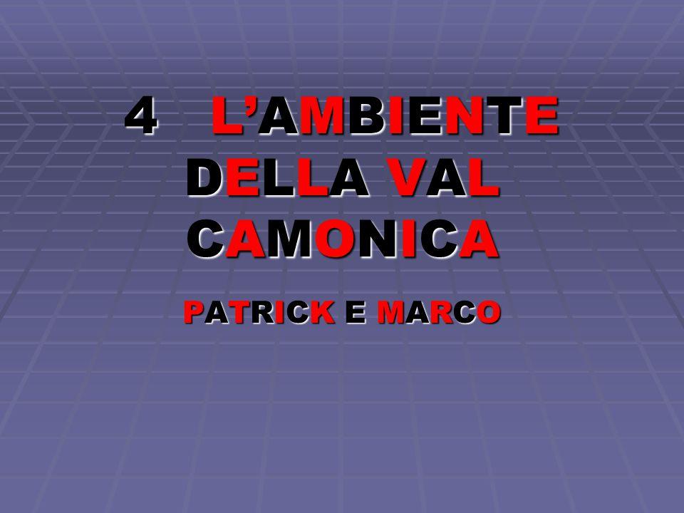 4 L'AMBIENTE DELLA VAL CAMONICA