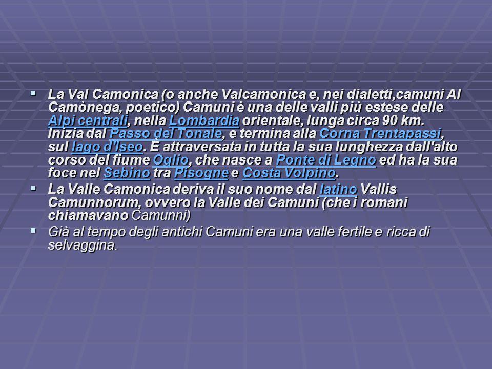 La Val Camonica (o anche Valcamonica e, nei dialetti,camuni Al Camònega, poetico) Camuni è una delle valli più estese delle Alpi centrali, nella Lombardia orientale, lunga circa 90 km. Inizia dal Passo del Tonale, e termina alla Corna Trentapassi, sul lago d Iseo. È attraversata in tutta la sua lunghezza dall alto corso del fiume Oglio, che nasce a Ponte di Legno ed ha la sua foce nel Sebino tra Pisogne e Costa Volpino.