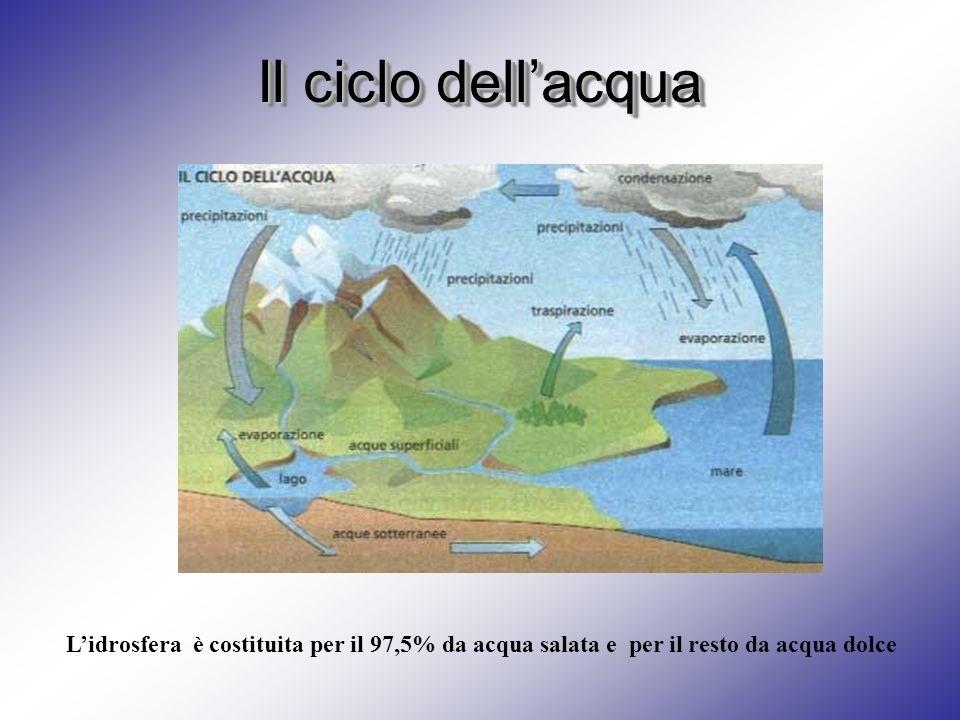 Il ciclo dell'acqua L'idrosfera è costituita per il 97,5% da acqua salata e per il resto da acqua dolce.