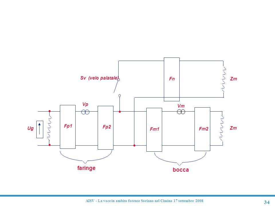 Modello analogico del tratto vocale
