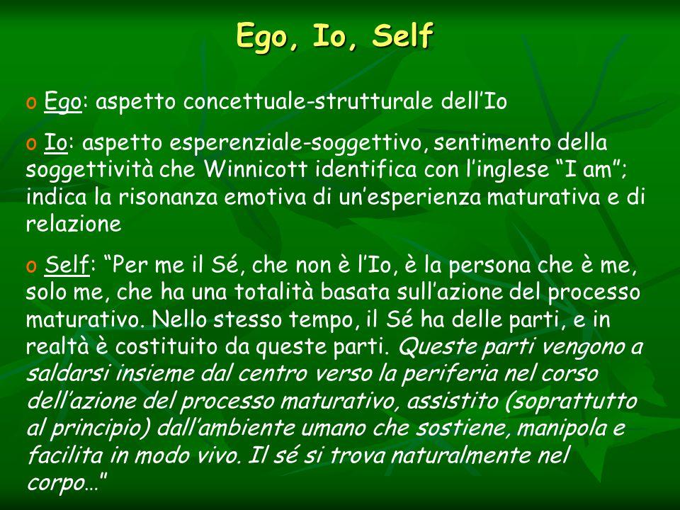 Ego, Io, Self Ego: aspetto concettuale-strutturale dell'Io