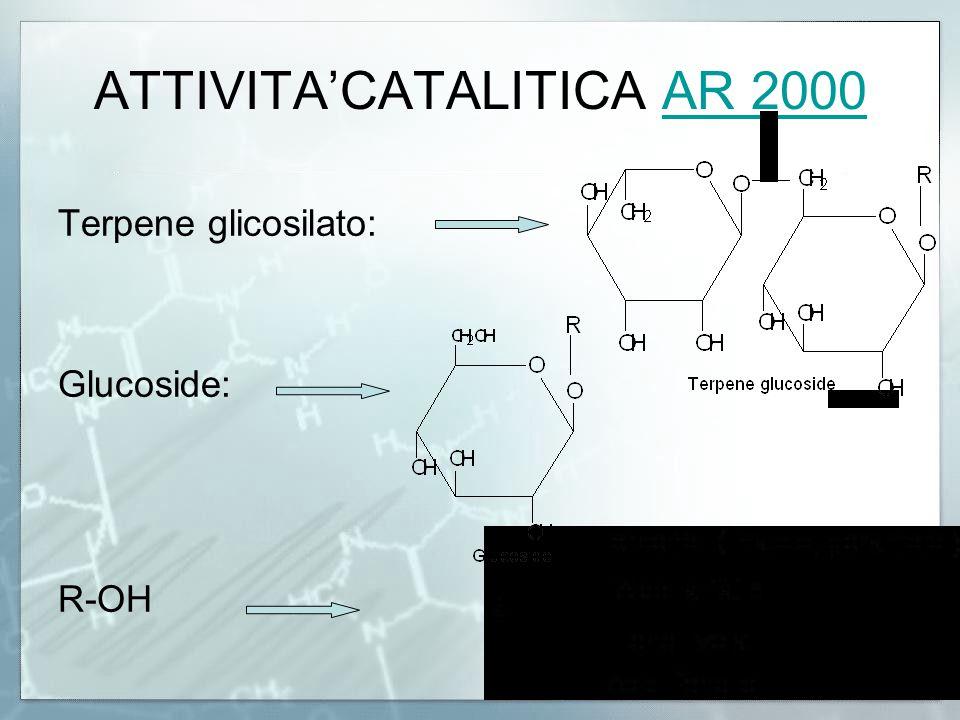ATTIVITA'CATALITICA AR 2000
