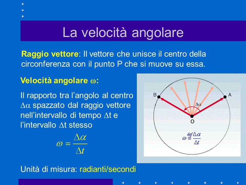La velocità angolare Raggio vettore: Il vettore che unisce il centro della circonferenza con il punto P che si muove su essa.