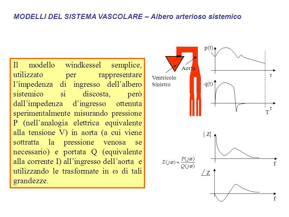 MODELLI DEL SISTEMA VASCOLARE – Albero arterioso sistemico