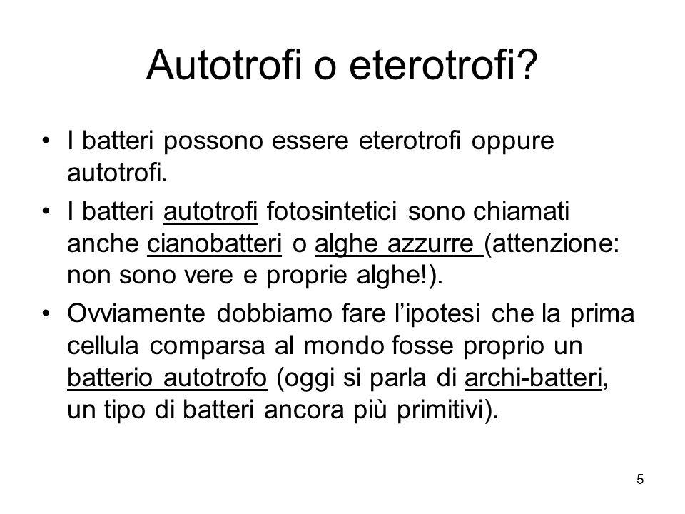 Autotrofi o eterotrofi