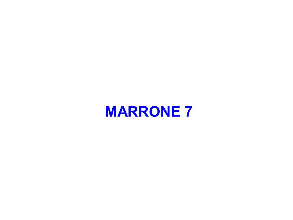 MARRONE 7