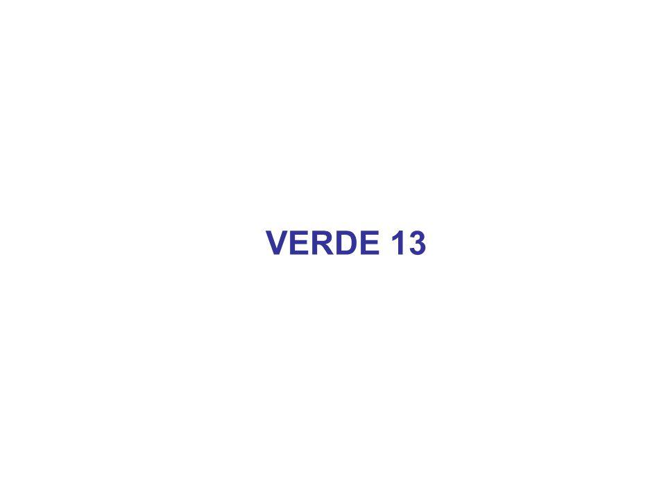 VERDE 13