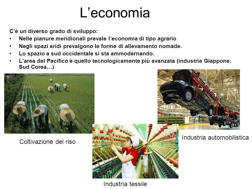 L'economia Industria automobilistica Coltivazione del riso