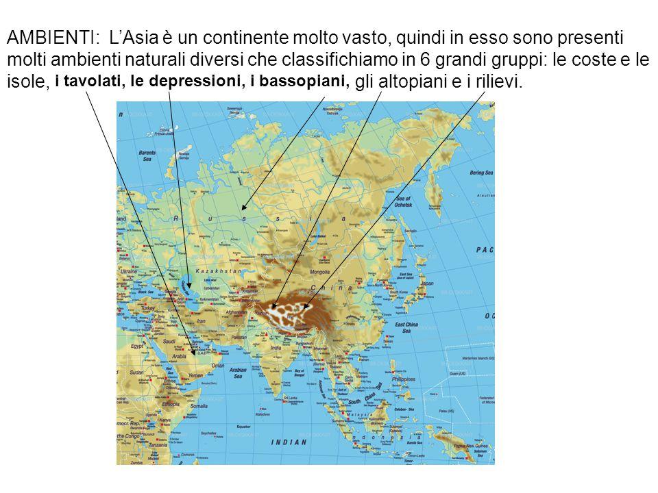 AMBIENTI: L'Asia è un continente molto vasto, quindi in esso sono presenti molti ambienti naturali diversi che classifichiamo in 6 grandi gruppi: le coste e le isole, i tavolati, le depressioni, i bassopiani, gli altopiani e i rilievi.