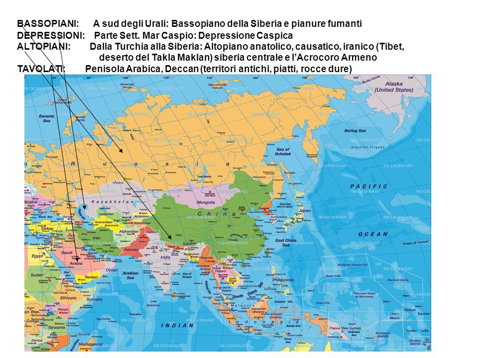 BASSOPIANI: A sud degli Urali: Bassopiano della Siberia e pianure fumanti